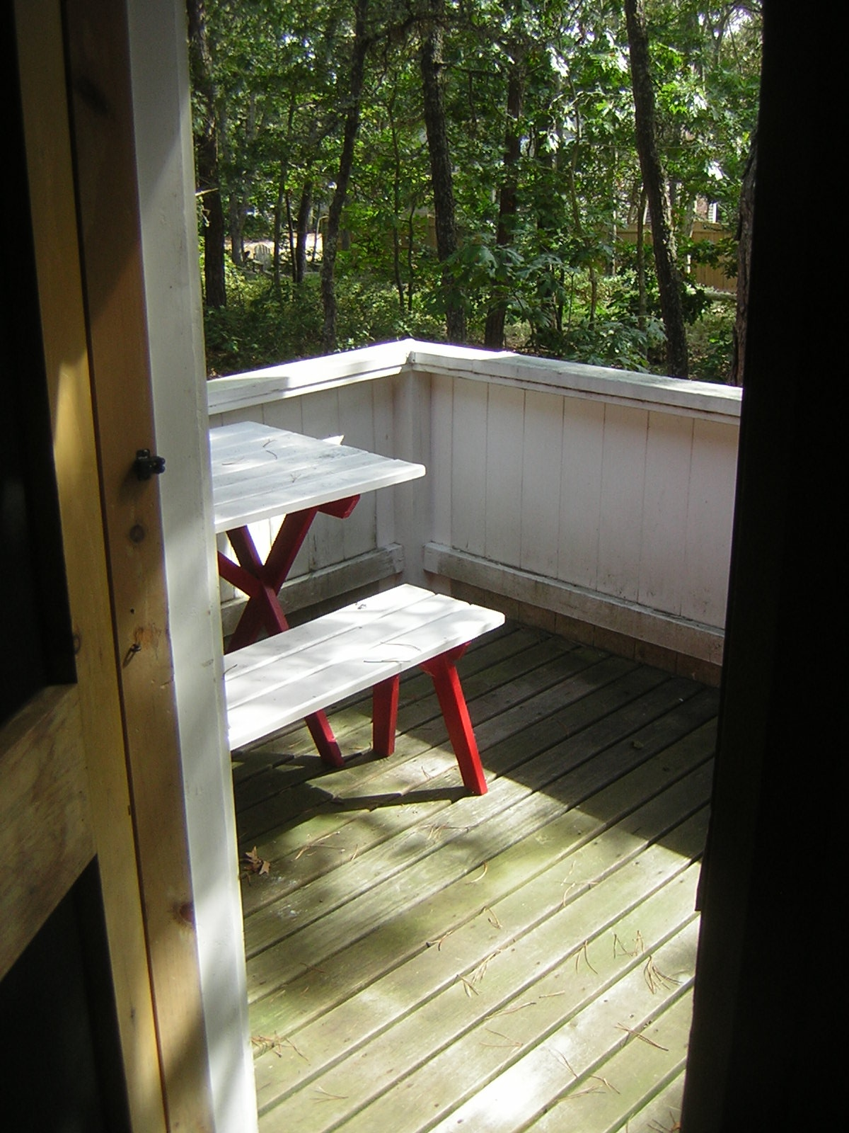 Back porch - South East